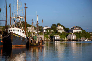 Martha's Vineyard Tours, Menemsha, Quitsa Strider