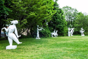 Field Gallery. Experience Martha's Vineyard with Martha's Vineyard Tours and Transport